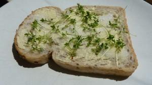 Cress_bread_sugar_butter