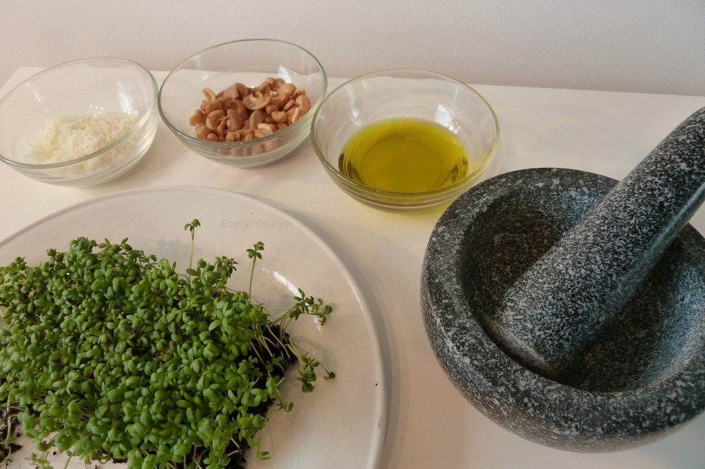 cress_pesto_ingredients