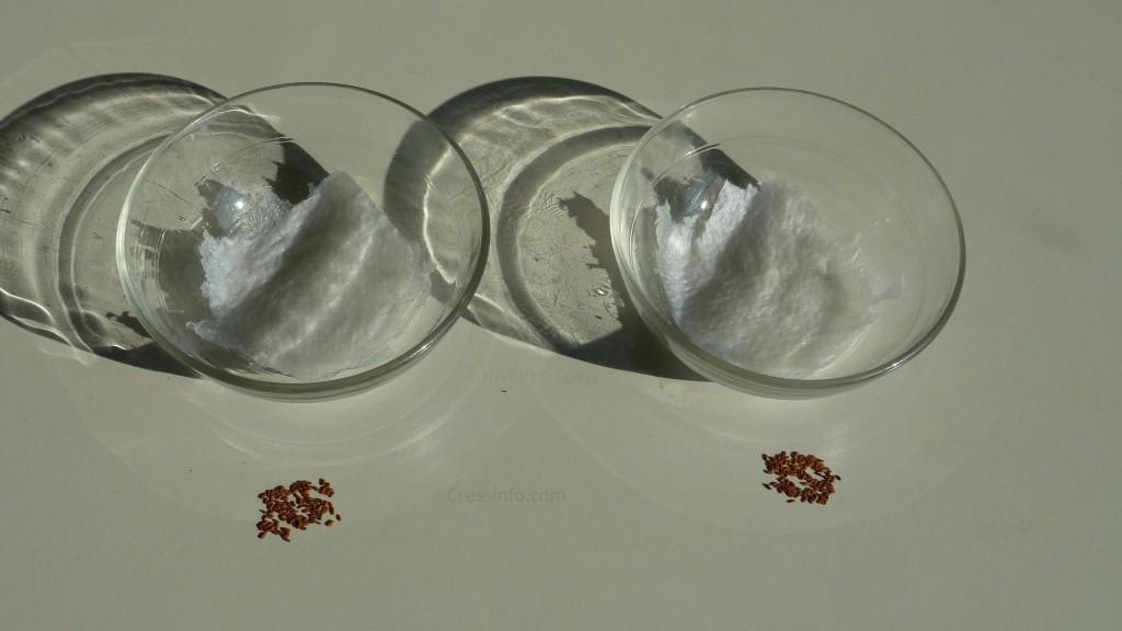 cress_wifi_experiment_2x100_seeds