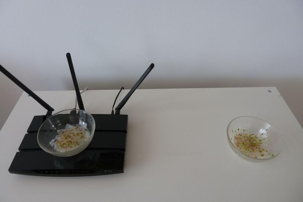 Wi-Fi experiment setup day 6